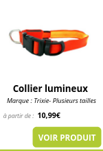 Collier lumineux_0.png