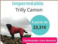 Emmène ton chien imperméable wanimo png.png