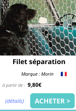 Filet séparation EmmeneTonChien.com.png