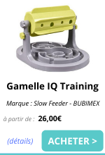Gamelle IQ Training - EmmèneTonChien.png
