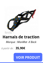 Harnais de traction.png