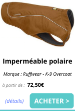 Impermeable Overcoat EmmeneTonChien.com.png