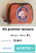 Kit premier secours EmmeneTonChien.png