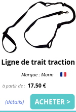 Ligne de trait traction EmmeneTonChien.com.png