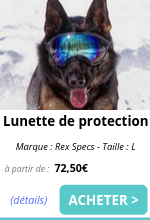 Lunette de protection EmmeneTonChien.com.png