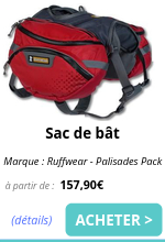 Sac de bat EmmeneTonChien.com.png
