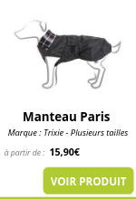 Manteau Paris.png