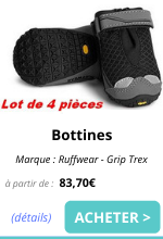 bottines EmmeneTonChien.com_0.png