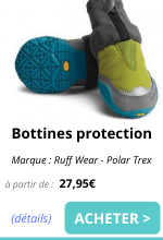 bottines de protection EmmeneTonChien.com.png