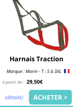harnais traction sport canin chien emmenetonchien morin.png