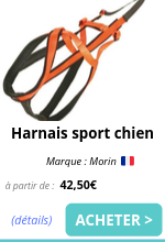 harnais traction sport chien morin emmenetonchien.png
