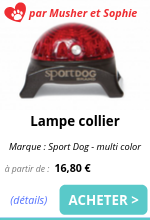lampe collier sport dog emmenetonchien.png