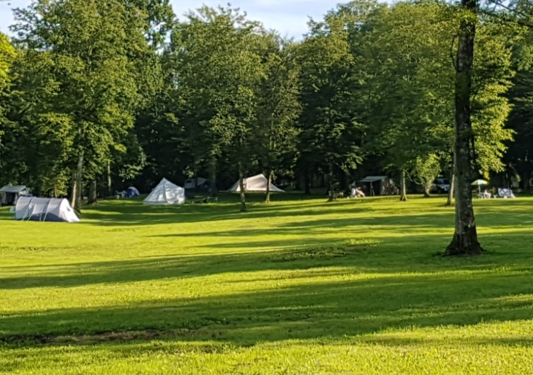 Camping Domaine du Buisson - Flower Campings Camping acceptant les chiens ok chien Louvemont