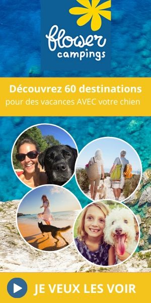 vacances chien flowercampings