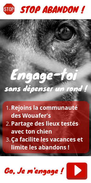 Engage toi contre l'abandon - deviens un Wemmeeemmeouafer's