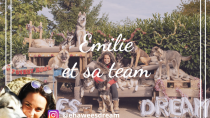 Émilie et sa dream team de 20 chiens