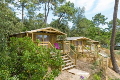 Camping des Pins - Flower Campings  Camping acceptant les chiens ok chien Soulac sur mer
